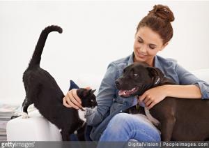 Tout savoir sur les chaleurs chez les chats et les chiens