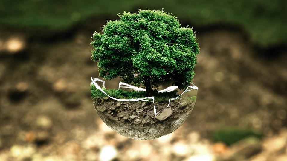 Travailler pour l'environnement
